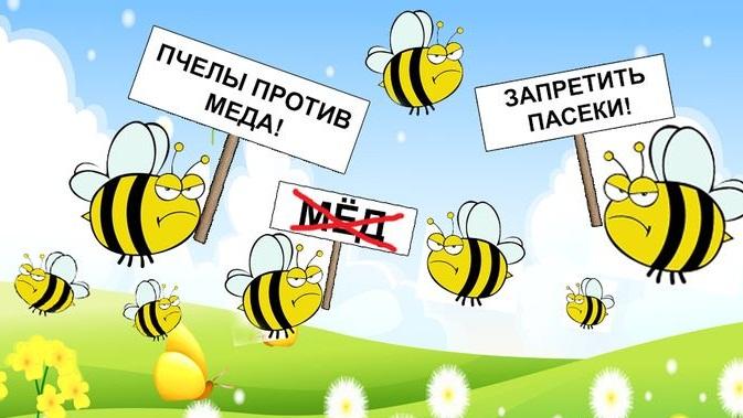 Адвокаты Домодедово: Доклад о нарушении сроков следствия — пчелы против меда?