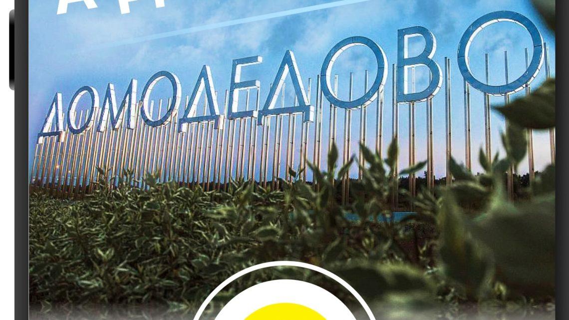 Юристы и адвокаты Домодедово о возмещении ущерба в результате падения дерева на автомобиль